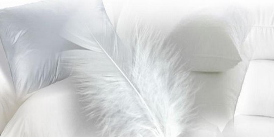 almohadas de pluma / la casa de las almohadas salamanca
